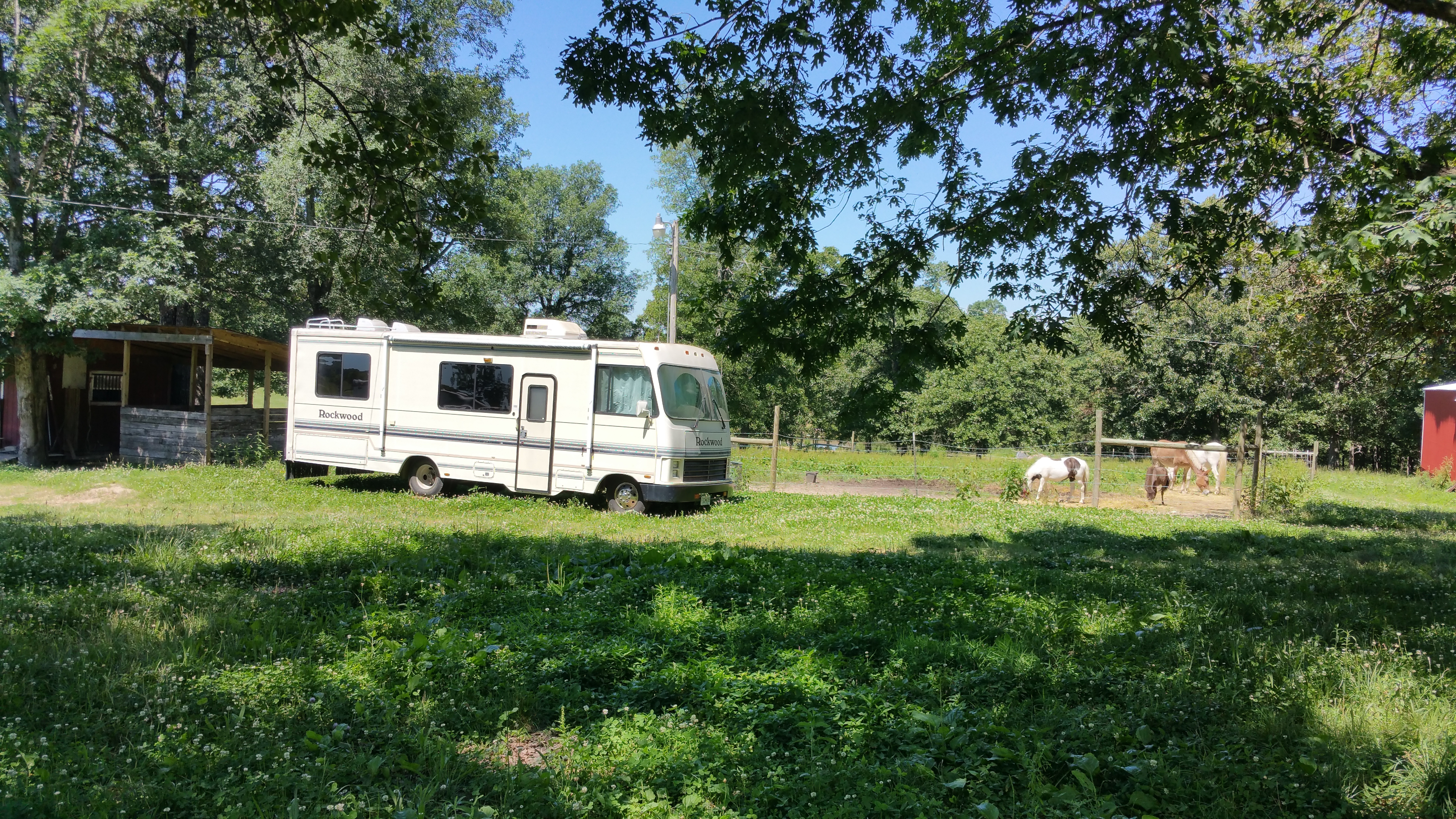 Are Rexhall motor homes positively reviewed?